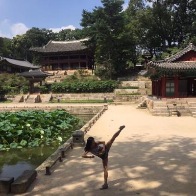 Corée Palais de Séoul - 2017