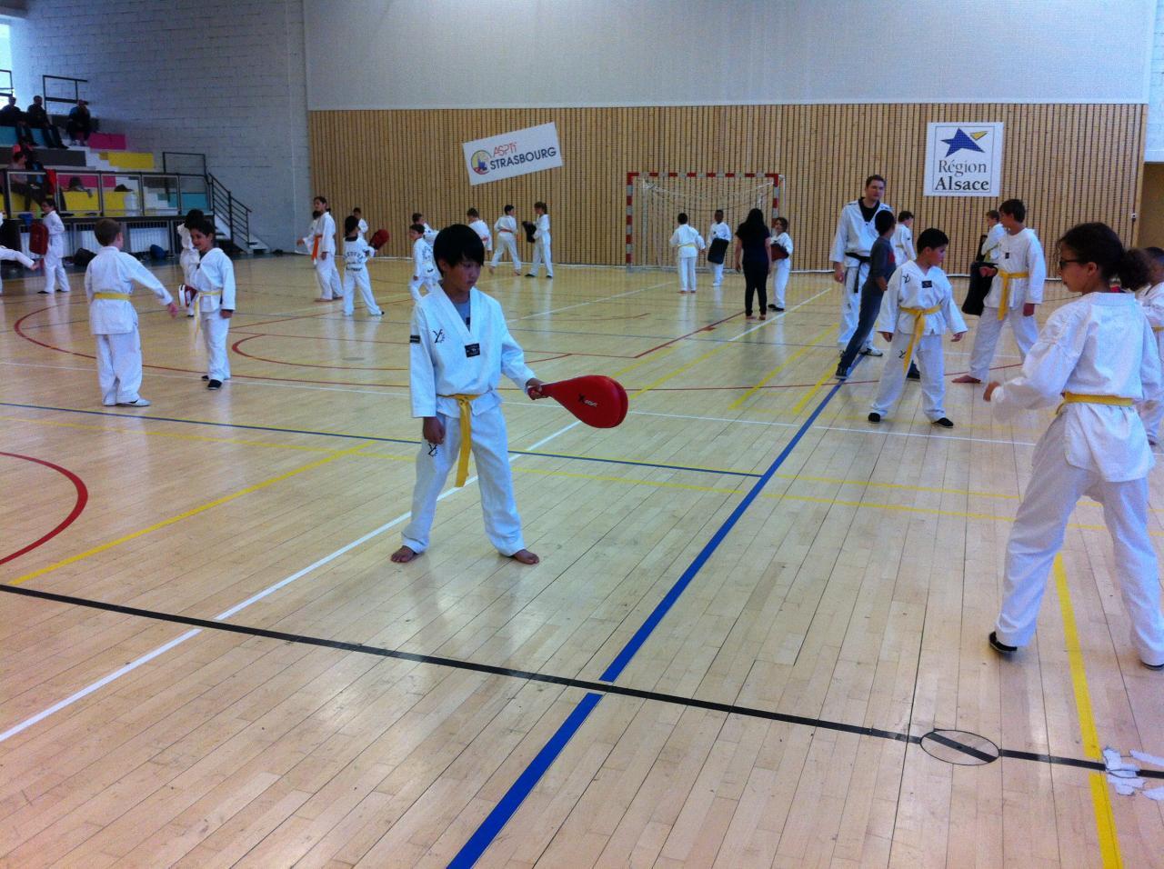 La Salle de Pheonix Taekwondo ASPTT Strasbourg