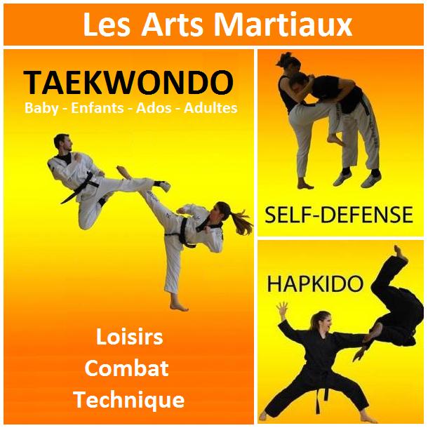 Entree arts martiaux