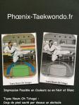 Lexique fftda en image taekwondo