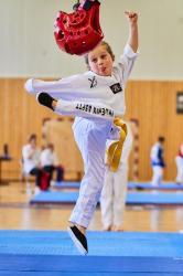 Phoenix Cup Asptt Strasbourg Taekwondo