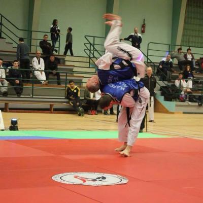 Challenge Hapkido 2015