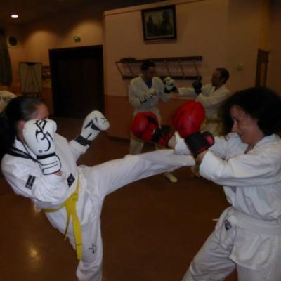 Les Cours de Taekwondo WTF et ITF