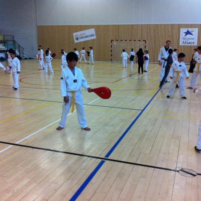 La Salle de Phoenix Taekwondo ASPTT Strasbourg