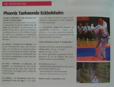 Eckbolaison taekwondo 1