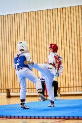 Phoenix cup asptt strasbourg taekwondo 82
